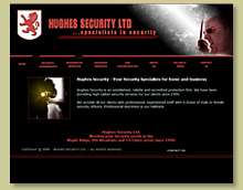 Thumbnail of Hughes Security Site